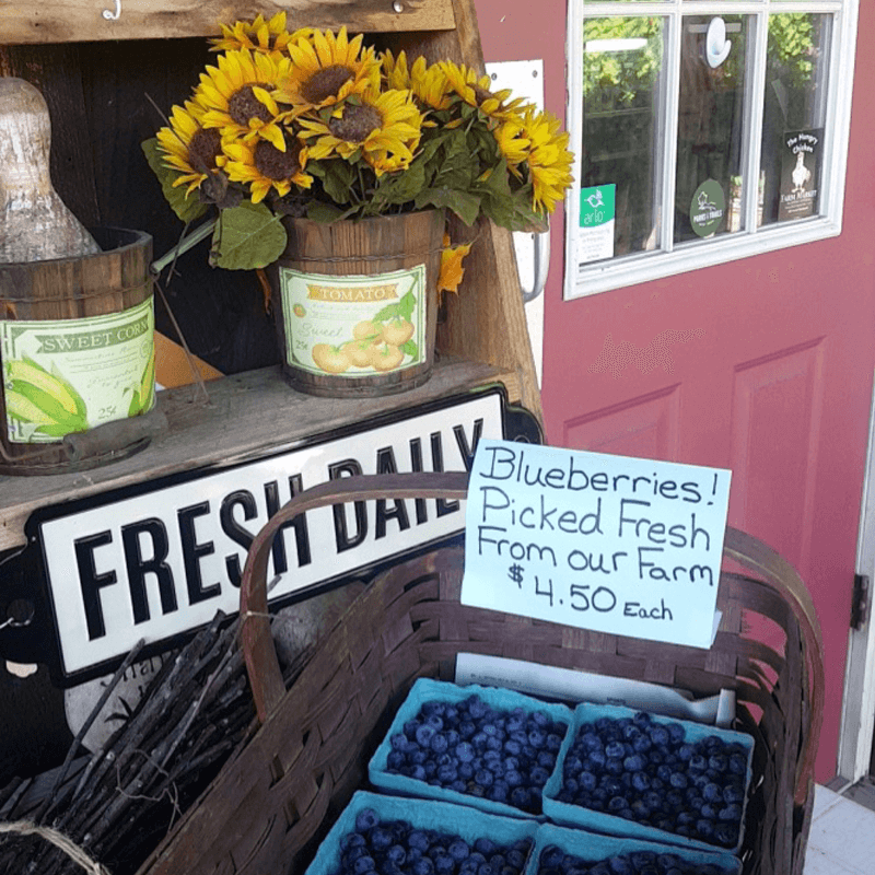 The Hungry Chicken Country Store Fresh Blueberries.
